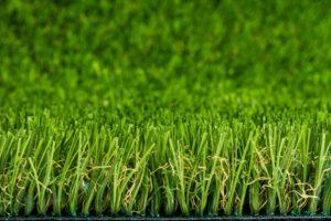Lifegrass